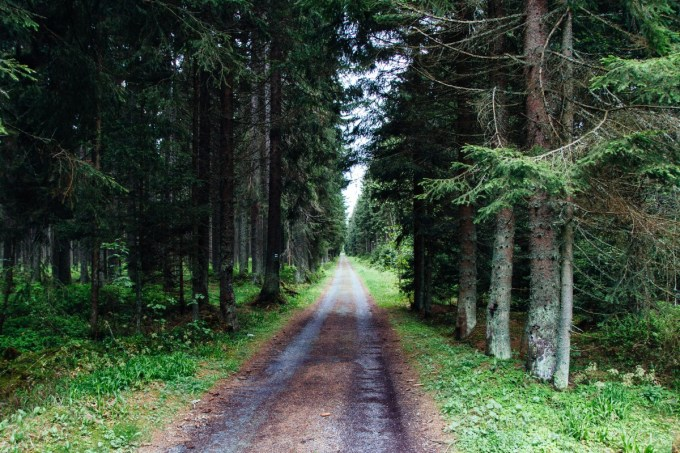 Road into Sumava