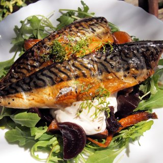 Search for a Connoisseur & Sharp's Brewery: Smoked Mackerel with Hot Beetroot and Horseradish Cream