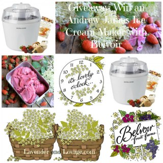 Giveaway: Win an Andrew James Ice Cream Maker with Belvoir