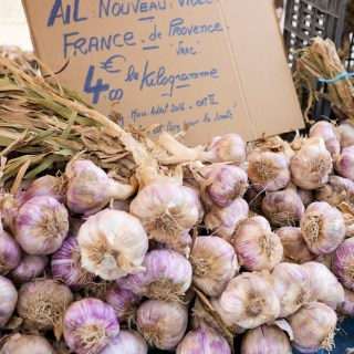 Travel Diary Preview: Terroir & Wine in Provence, Gard, Rhone Valley and Ardeche