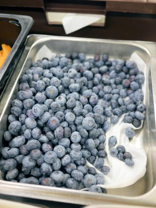 Finnish Bilberries