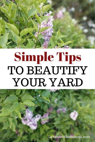 landscape your yard in simple steps with these tips