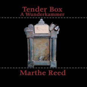 Tender Box: A Wunderkammer