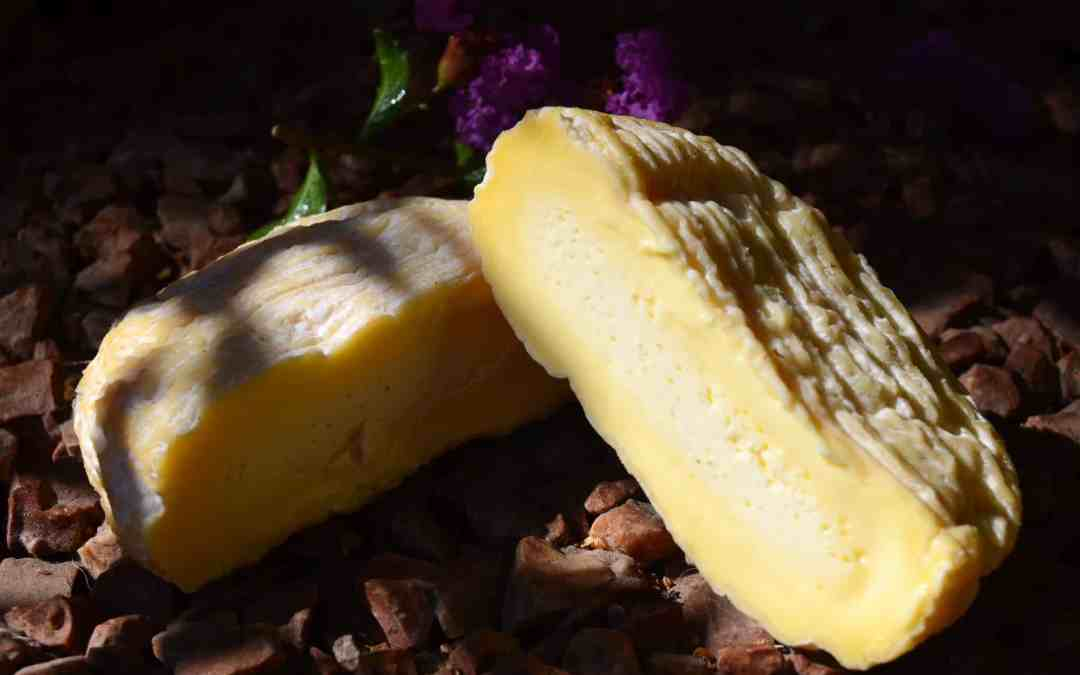 saint marcellin fromage
