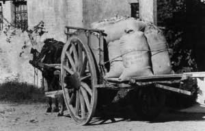 carretto con sacchi di farina