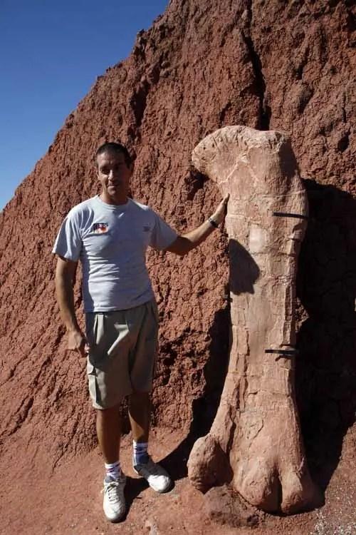 La Patagonia el desierto que fue un vergel para dinosaurios