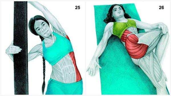 estiramientos musculares laterales