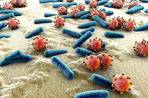 infecciones bacterianas relacionadas con la Anorexia