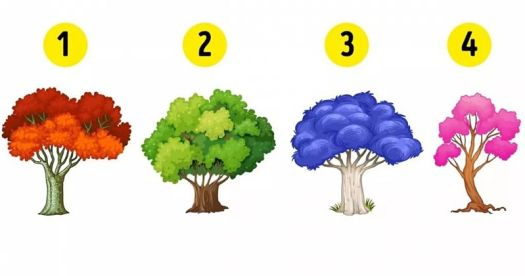 Elige un árbol y descubre qué emoción domina tu vida