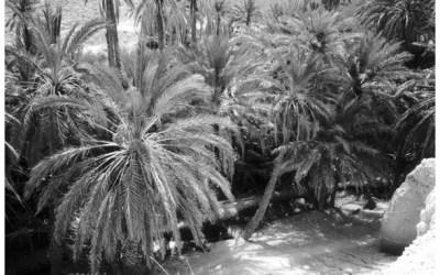 Chebika, sud tunisien
