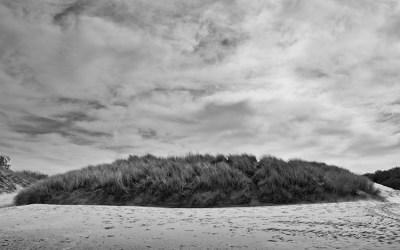 Dunes des Flandres