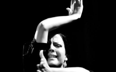 Canea Flamenca
