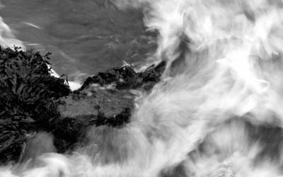 Nuée marine