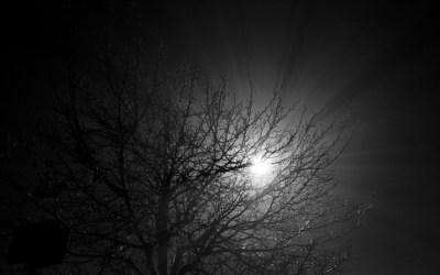 Brouillard nocturne