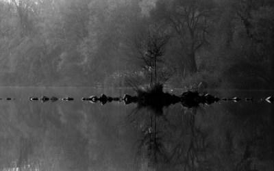 L'îlot sur la rivière…
