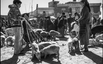 un marché au Guatemala (3)