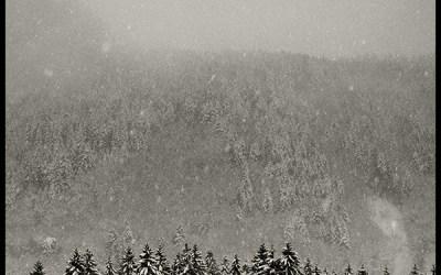 Il neige #7