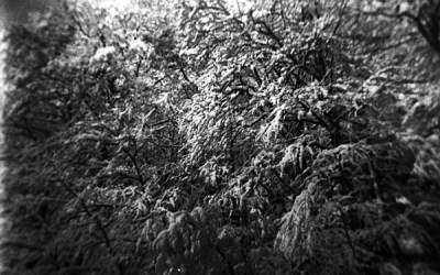 c'était l'hiver
