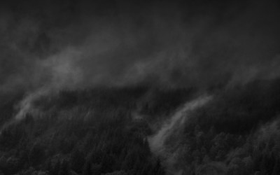 Rivière de brume