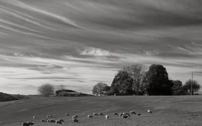 Ambiance rurale