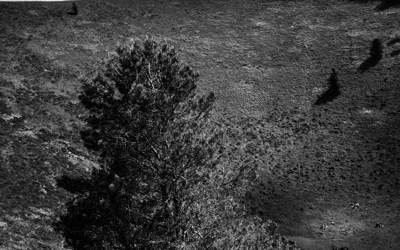 Du Pariou au Puy de Dôme