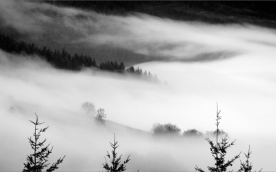 Marée de brume
