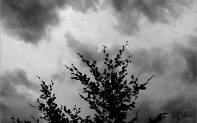 Supplique à la pluie