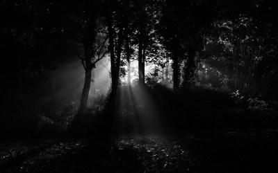 Vers la lumière …