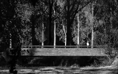 L'heure de l'ombre #2