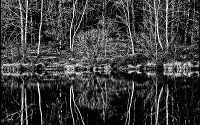 Noir miroir