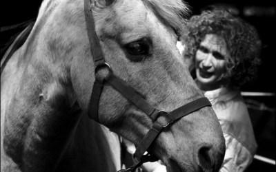 Le cheval qui parlait à l'oreille d'une femme