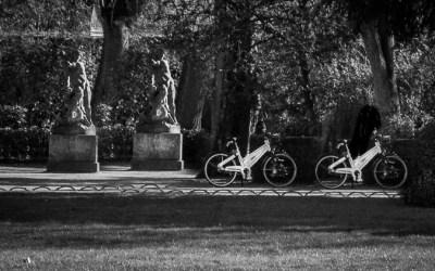 Jumeaux et vélos dans un jardin français