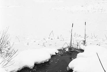 Lac de Remoray gelé 4/5