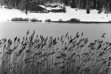 Lac de Remoray gelé 5/5