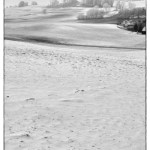 Fin d'hiver
