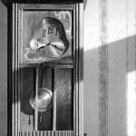 Canicule et dérégulation du temps.