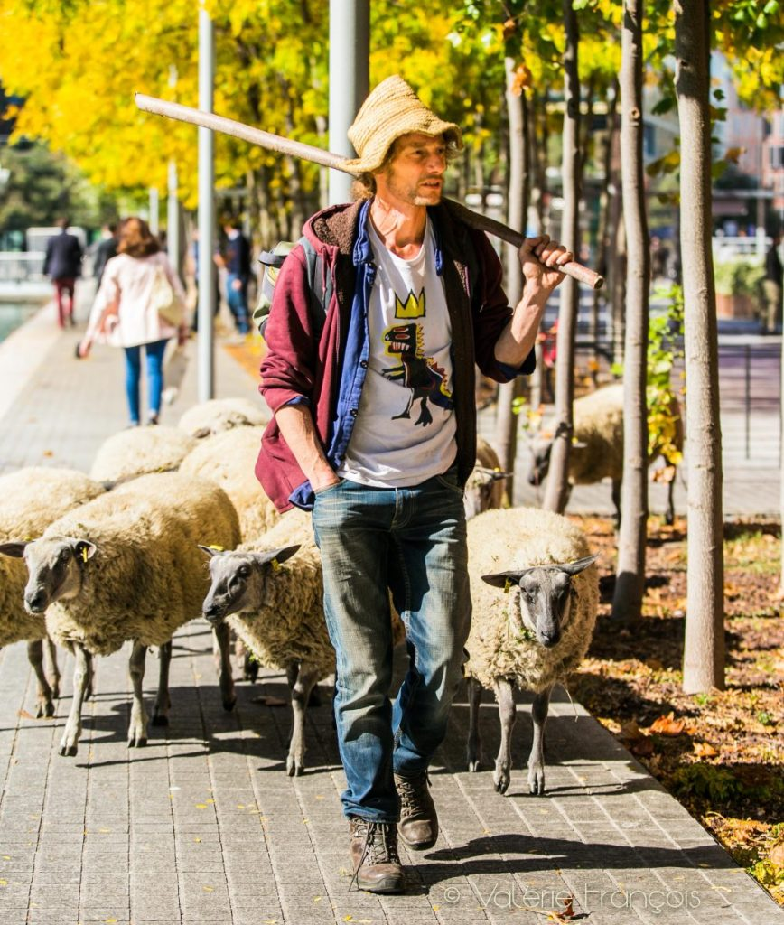 Guillaume, un des co-fondateurs des bergers urbains était animateur territorial avant de convertir dans l'agriculture urbaine.