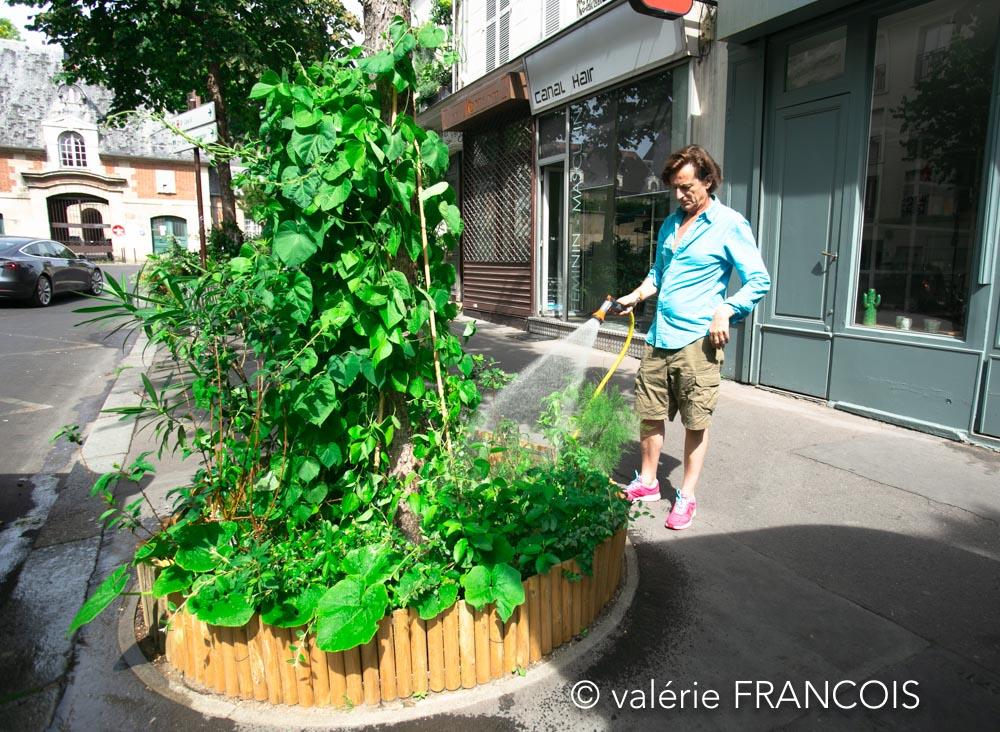 Jean David végétalise 3 pieds d'arbre à Paris.