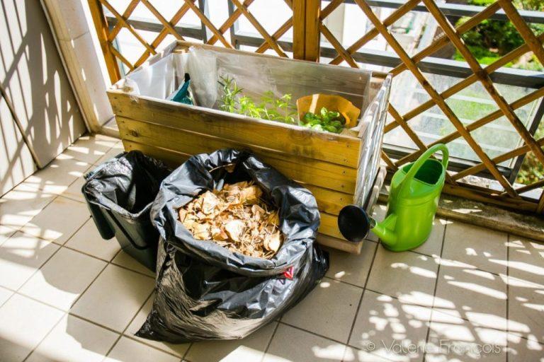 Mon potager urbain en permaculture