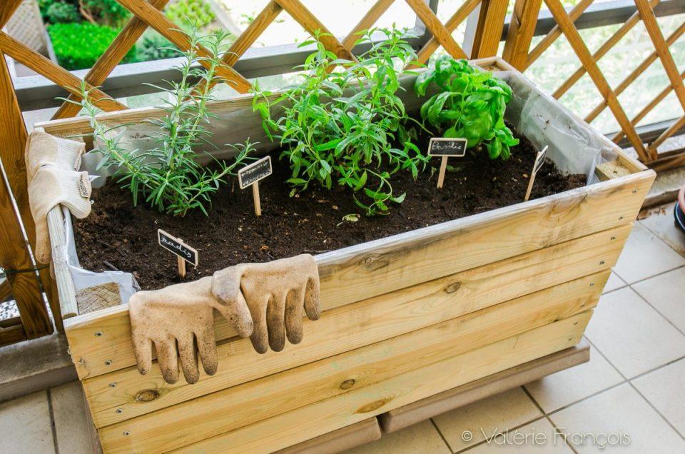 Mon petit potager urbain en permaculture