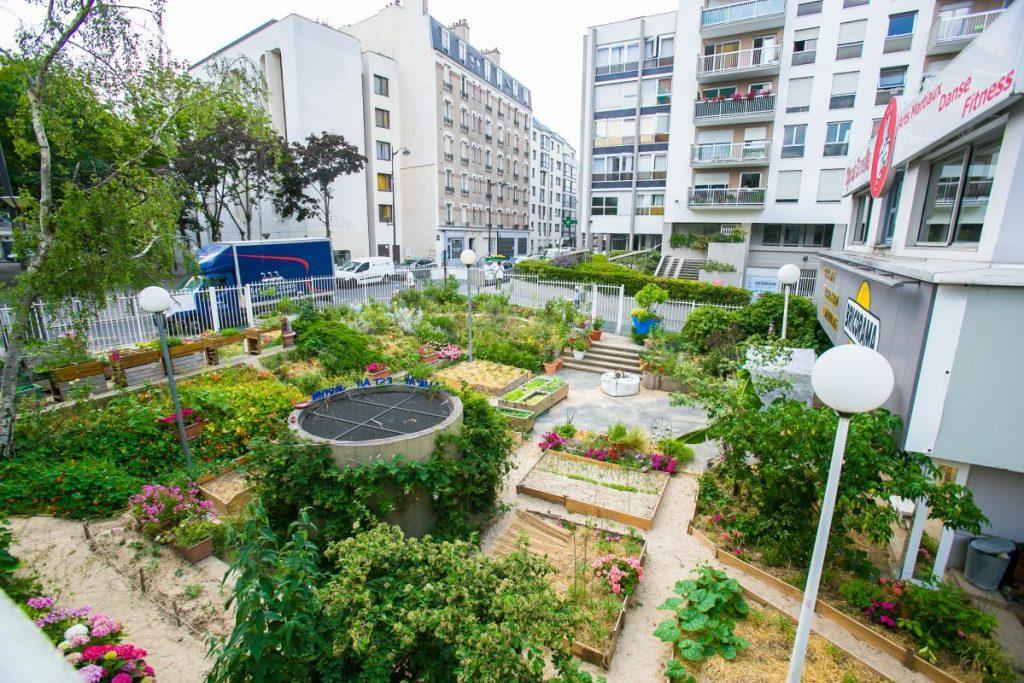 """Le jardin partagé """"L'amiral est au jardin"""""""