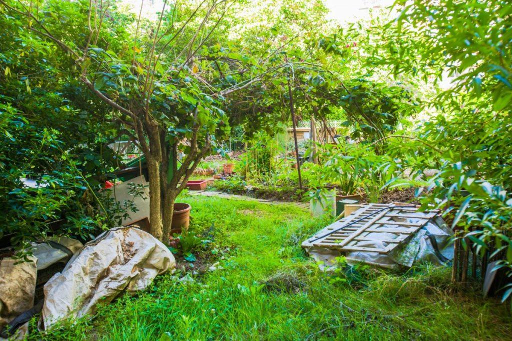 Jardin du moulin de la vierge - Paris 14