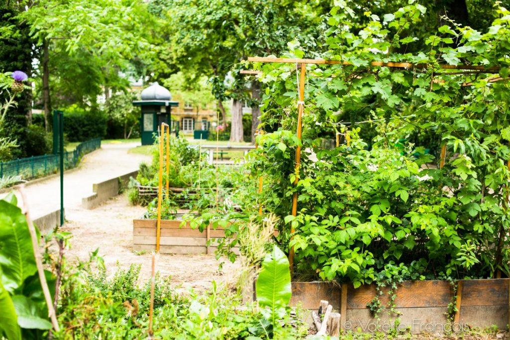 Le square Colbert et son jardin partagé