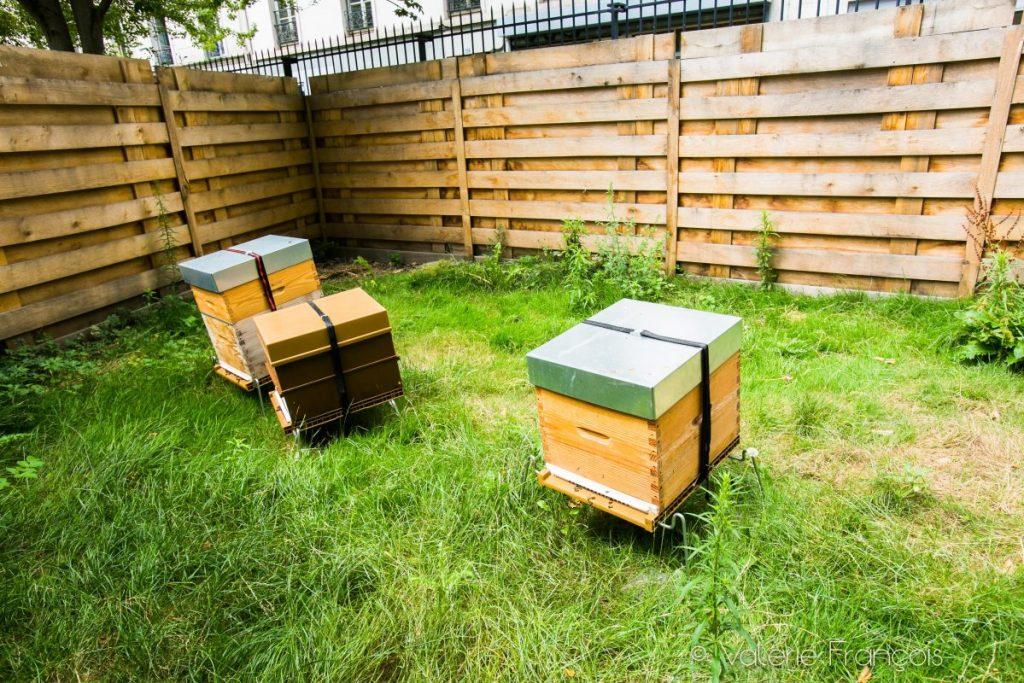Le rucher du square Louis Majorelle