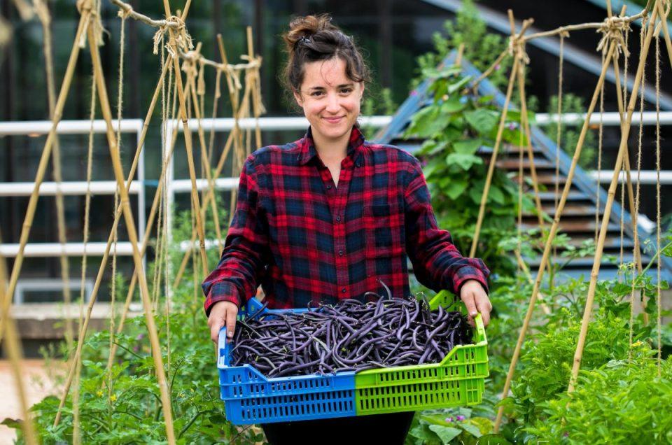Visite dans une ferme urbaine : Bienvenue chez Suzanne !