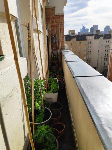 Le balcon de Valérie Tsimba