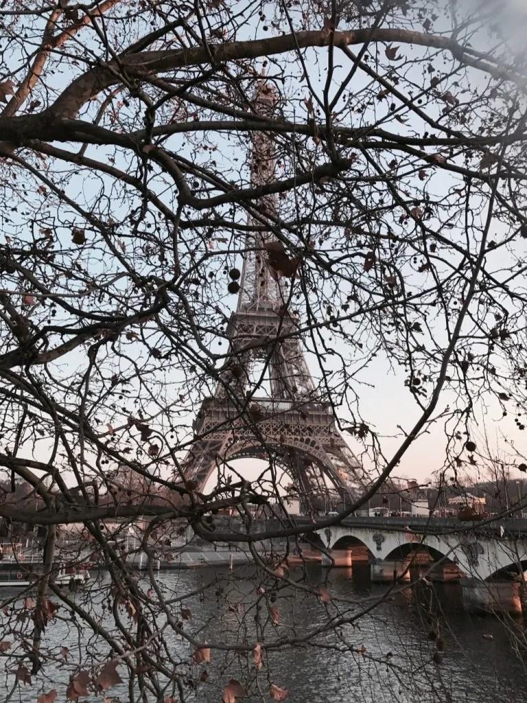 Tour Eiffel de la rive gauche