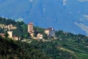 I grandi rossi dell'Alto Adige