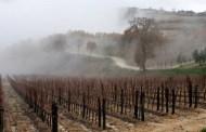 Piove e tira vento, ma qualche foto ci scappa sempre...andando da Soldera