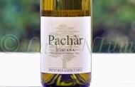 Produttori, un vino al giorno: Pachàr 2016 - Fattoria Lavacchio